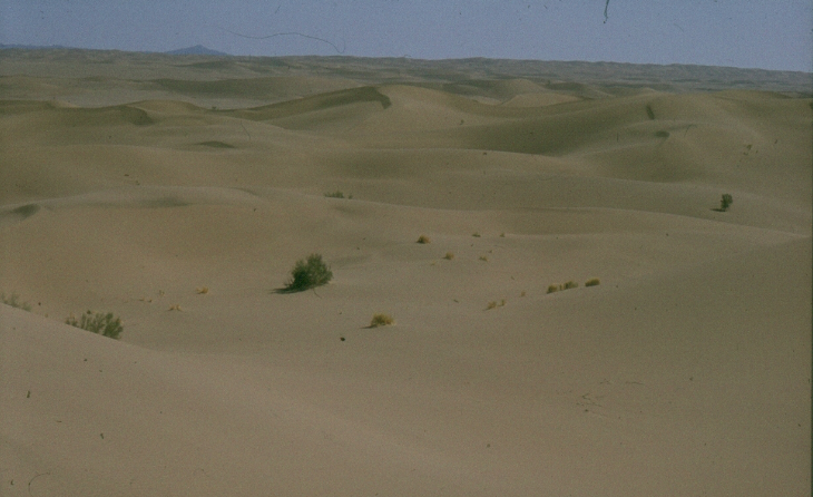 A Planet of Dunes