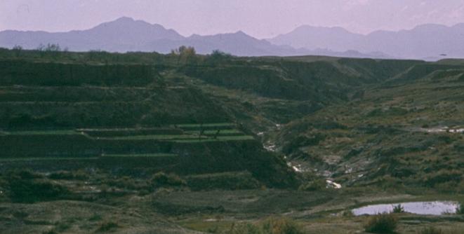 Terrace Farming.png