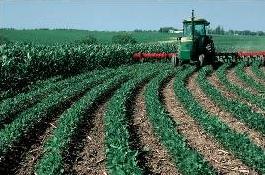 Tillage Farming